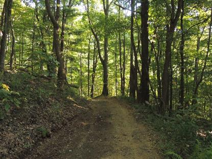 TBD Discovery Lane  Elk Creek, VA MLS# 74365