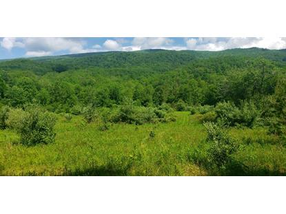 TBD Poor Valley Road  Bland, VA MLS# 74485