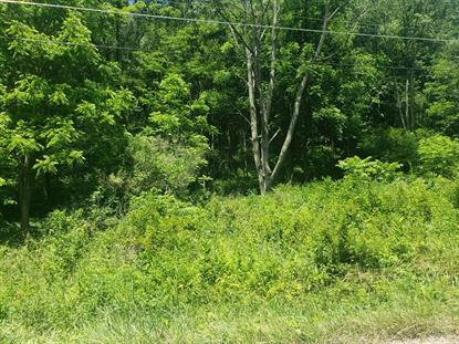 TBD Whitley Branch Road  North Tazewell, VA MLS# 74509