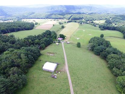 636 Flat Top Rd  Bland, VA MLS# 74614