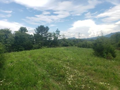 TBD Willow Springs Road  Cedar Bluff, VA MLS# 74750