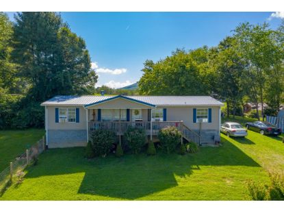 223 Felts Lane  Max Meadows, VA MLS# 75248