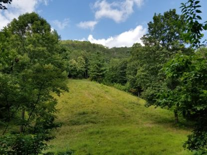 TBD Gem Stream Road  Elk Creek, VA MLS# 75444