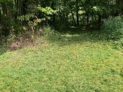 TBD Hwy 21  Elk Creek, VA MLS# 75629