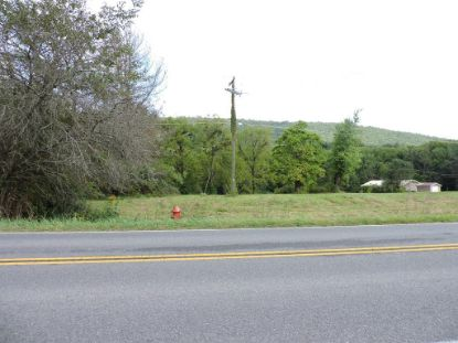 TBD Ivanhoe Rd  Max Meadows, VA MLS# 75643