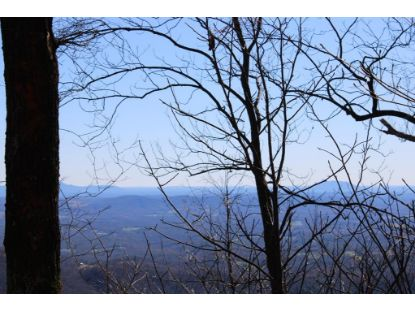 TBD Falcon Ridge  Fancy Gap, VA MLS# 76363