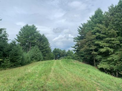 Lot 2 Buck Mountain Rd.  Troutdale, VA MLS# 76369