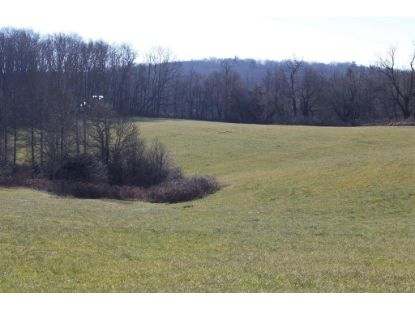 TBD Quarry Road  Fancy Gap, VA MLS# 76542