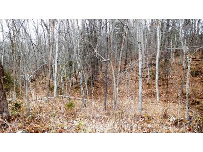TBD Pope Road  Ivanhoe, VA MLS# 76566