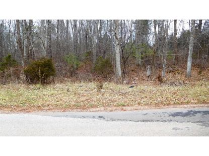 TBD Pope Road  Ivanhoe, VA MLS# 76567