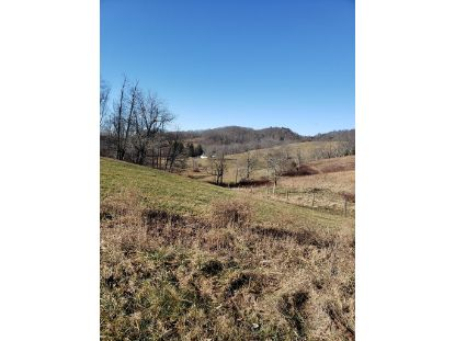 311 Lost Lake Rd.  Troutdale, VA MLS# 76637