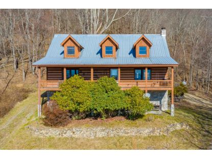 848 Black Rock Mountain Ln  Independence, VA MLS# 76656