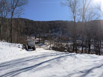 79 acres Old Mountain Rd  Bland, VA MLS# 76779