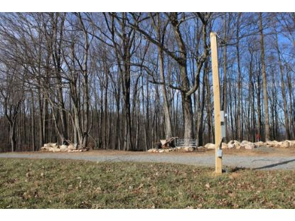 2288 Frog Spur Rd  Fancy Gap, VA MLS# 76803
