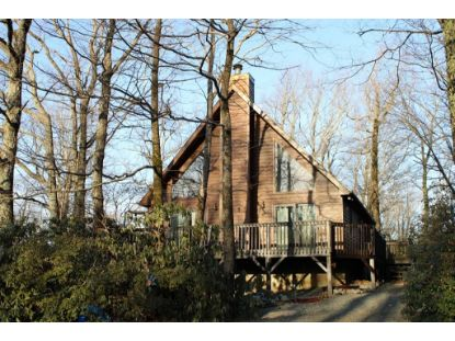 358 Flint Ridge Trail  Fancy Gap, VA MLS# 76897