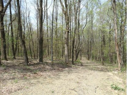 TBD Winchester Drive  Fancy Gap, VA MLS# 76905