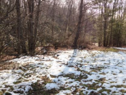 TBD Fishers Rd  Mouth of Wilson, VA MLS# 76915