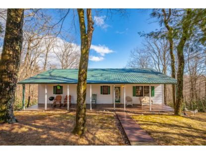 327 Bavarian Way  Fancy Gap, VA MLS# 77086