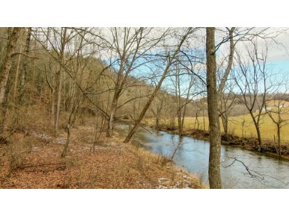 0 Scratch Gravel Rd  Max Meadows, VA MLS# 77208