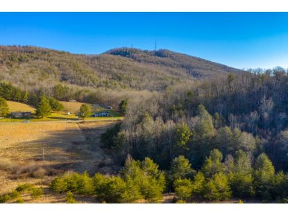 53 acres Locust Hill Rd  Max Meadows, VA MLS# 77211