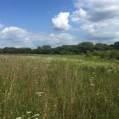 31 Acres, Brook, IN 47922 - Image 1