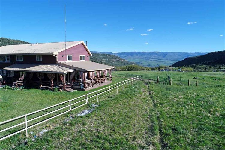 19561 Kimball Creek Road, Collbran, CO 81624