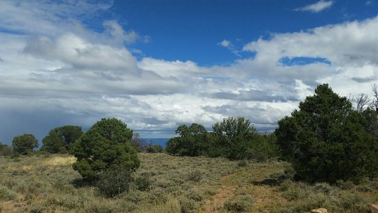 TBD Elk Ranch Road, Glade Park, CO 81523