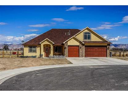 1860 Golden Ranch Road, Fruita, CO