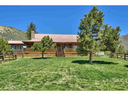 20651 Kimball Creek Road, Collbran, CO