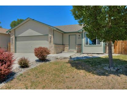 3278 Columba Drive, Clifton, CO