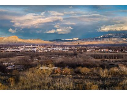 305 Little Park Road Grand Junction, CO MLS# 20184383