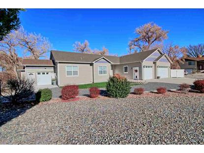 2245 Idella Court Grand Junction, CO MLS# 20186402