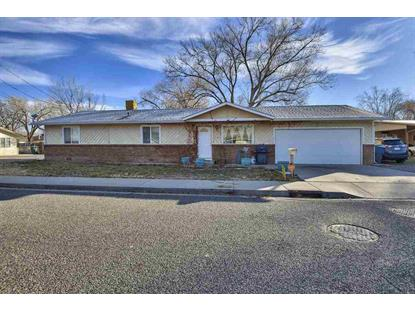 296 Holly Lane Grand Junction, CO MLS# 20186594