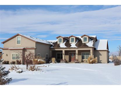 823 Mease Road Grand Junction, CO MLS# 20186762