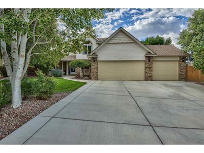 2819 Conifer Court Grand Junction, CO MLS# 20190186