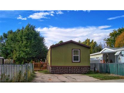 517 Lonnie Way, Fruita, CO