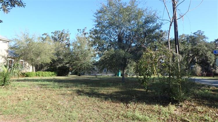 Lot 4 First Street, Darien, GA 31305 - Image 1