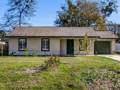 309 Clarks Bluff Road Kingsland, GA MLS# 1604279