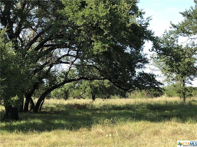 1429 CR 303, Bertram, TX 78654