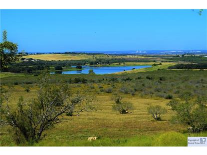 TBD Old Lehmann Road Seguin, TX MLS# 304267