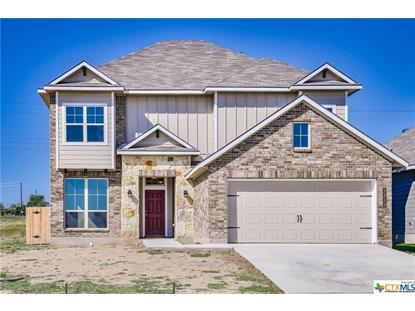 1210 Amber Dawn Drive, Temple, TX