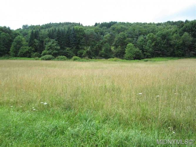 567 State Highway 166, Cooperstown, NY 13326 - Image 1
