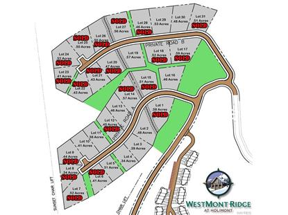 Lot #16 WestMont Ridge , Ellicottville, NY