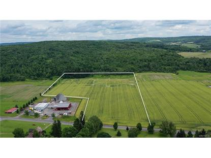 8018 Route 16  Farmersville, NY MLS# B1207207