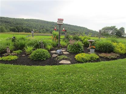 5049 Riceville Road West Valley, NY MLS# B1207916