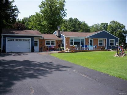13 Mount Pleasant Avenue Franklinville, NY MLS# B1208011