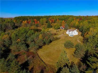 4671 Lynch Road Alfred Station, NY MLS# B1302728