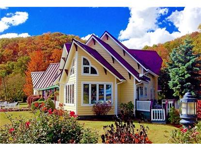75 D South Glenora Road  Dundee, NY MLS# R1198552