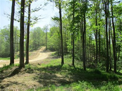 0 Geiger Hollow Road Allegany, NY MLS# R1208990