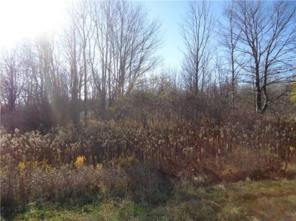 0 Ward Road Wayland, NY MLS# R1304930